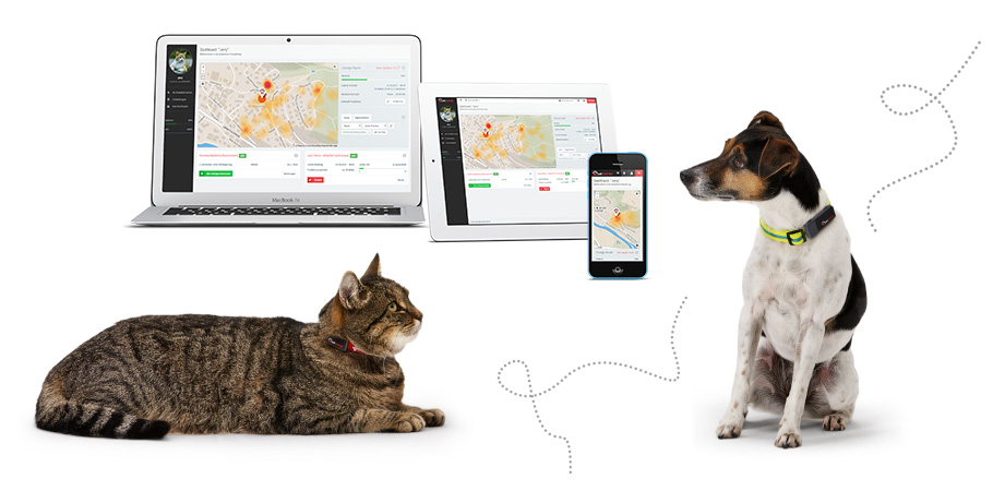 petpointer GPS Tracker for pets